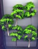 5 Laubbäume, hellgrün, ca. 12 cm hoch